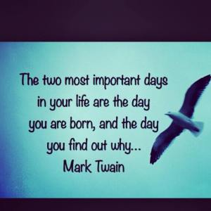 born and why gull twain